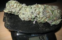 Buy BlueBerry strain online (Marijuana)