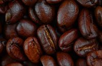 fresh coffee to rejuvenate