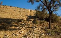 Hill climb 3
