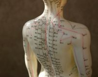 Traditional Chinese Medicine and Acupuncture, a meridian and acupuncture point model