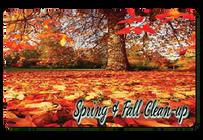 Spring Cleanup Buffalo NY