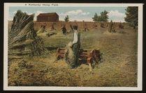 hemp farm, hemp history, hemp farmers