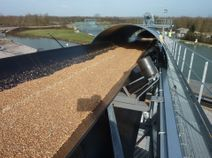 Conveyor belt for agiculture industries