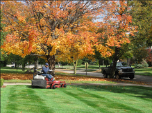 Elgin, IL Lawn Care services