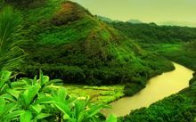 certified palm oil free for rivers