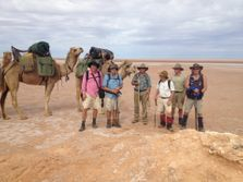 Bushwalking Clubs camel trekking in South Australia's Flinders Ranges. Outback Australian Camels, Treks, Safaris, Tours, Expeditions and Camel Training, Expedition Training.