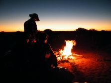 Family Camel Safaris, tours and treks in Australia.