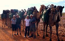 Camel Treks with couples. Outback Australian Camels. Camel adventures trekking the desert wilderness.