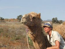 Camel Yoga Retreats with Outback Australian Camels. Outback Camel Treks in the Flinders Ranges, South Australia