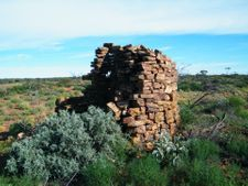 Remote Discoveries. Outback Australian Camel Treks Tours Safaris and Camel Desert Expeditions.