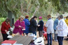 Ladies Gathering - Araluen