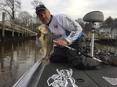 Mike Ward bass fishing tips on the upper bay