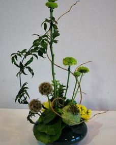 scabiosa and poppy pod centerpiece