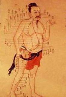 méridien de la VB acupuncture