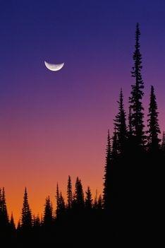 Crecent Moon Sky Astrology