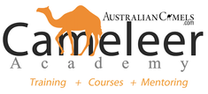 Cameleer Academy Camel Training Cameleer Training