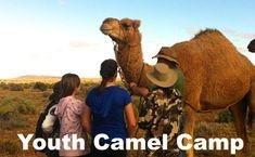 Outback Australian Camels Camel Treks Youth Camel Camp
