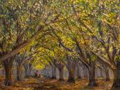 This Walnut orchard oil painting was created with real walnut oil medium, so the trees are really made of walnut.  The walnut farmer in the backgound adds a human element to this peaceful and idyllic scene.