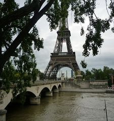 "src=""australian womens travel.jpg alt=womens travel,eiffel tower in the distance with foliage in front , paris france """