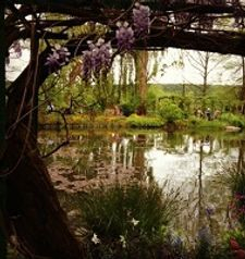 "ours.jpg alt=womens travel, view over watr lily lake, monets garden, giverny, france"">"
