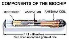 Microchip implant