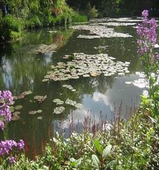 "ours.jpg alt=womens travel,waters lily pond, monets garden, giverny, france"">"