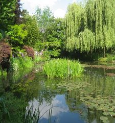 "ours.jpg alt=womens travel, view of waterlily pond, monets garden, giverny, france"">"
