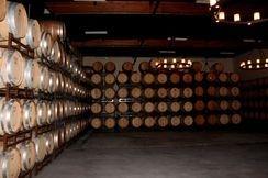Wine Buyer & Supplier