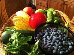 Organic super food
