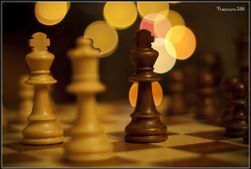 'Chess is mental tortune' Garry Kasparov