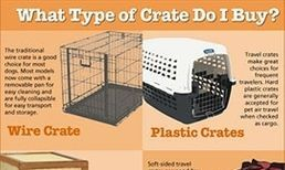 we have all sizes of  crates to delivered your puppies