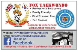 Fox TaeKwonDo Buissnes Card