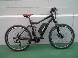 electric bike ebike