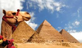 Egypt family tours