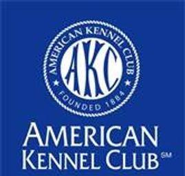 AKC - American Kennel Club