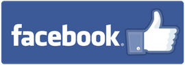 Facebook Logo link to FB