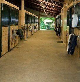 Beautiful 12x14 stalls