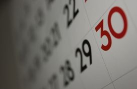 Boy Scout 633 Calendar