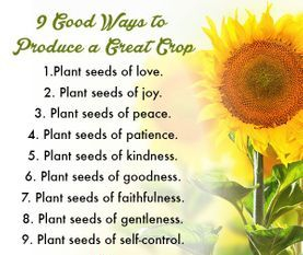 9 ways to produce a great crop