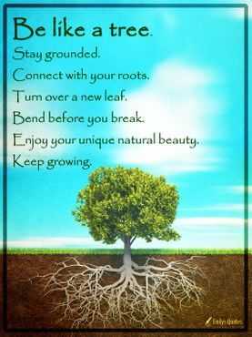 Lays the foundation  to  be and stay strong like a tree