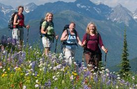 Rare Wild Flowers and Orchids Holiday Tours Abruzzo