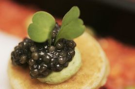 France Originelle French Gourmet Blinis