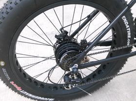 rear hub drive electric fat bike