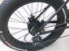 rear hub drive electric fat bike