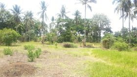 Batangas farm lot for sale
