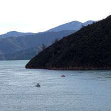Charlotte Sound South Island New Zealand