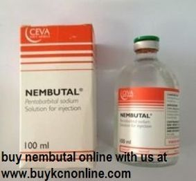 buy nembutal injection online