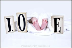 vertigo productions photography, brockville newborn photographer, gananoque newborn photographer, newborn photographer