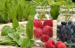 Berries Fruit and Water