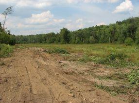 wetland restoration construction